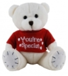 You`re Special Teddy Bear